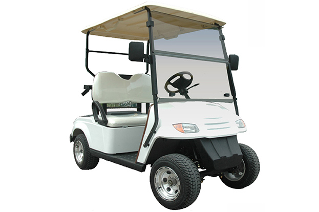 2 Seats Golf Cart EG2029K